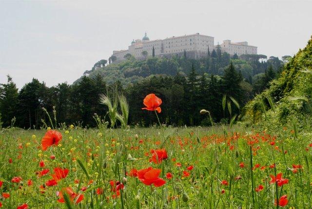 75 Rocznica Bitwy O Monte Cassino Aktualności Biblioteka